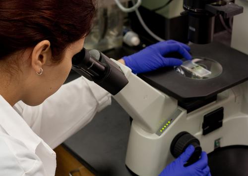breast reconstruction breakthroughs
